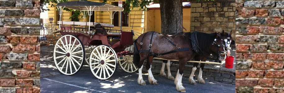 Beechworth Carriages